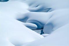 在雪的新动物踪影 库存照片