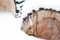 在雪的木材 库存照片