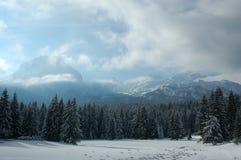 在雪的杜米托尔国家公园monuntain 库存照片