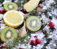 在雪的果子 免版税库存图片