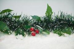 在雪的槲寄生 库存图片