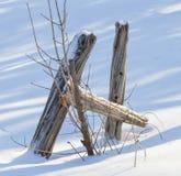 在雪的残破的篱芭 库存图片