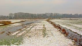 在雪的沼泽风景在富兰德 库存图片