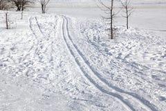 在雪的滑雪跟踪 免版税库存图片