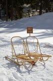 在雪的狗雪撬 免版税库存照片