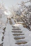 在雪的石楼梯。 库存图片