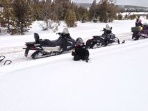在雪的秋天 库存图片