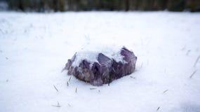 在雪的紫晶 库存照片