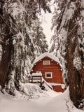 在雪的红色客舱 免版税图库摄影