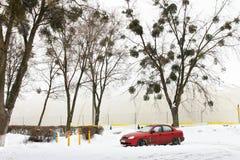在雪的红色汽车在室内操场附近 免版税库存照片