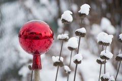 在雪的红色注视的球 库存图片