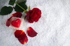 在雪的红色玫瑰与与瓣的心脏蜡烛 免版税库存图片