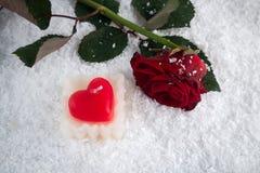 在雪的红色玫瑰与心脏蜡烛 免版税库存照片