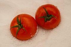 在雪的红色,成熟蕃茄 免版税库存图片
