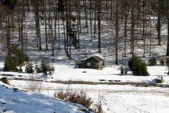 在雪的老木客舱 库存照片