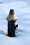 在雪的老消防龙头 免版税图库摄影