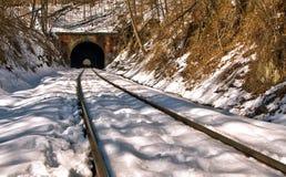 在雪的老火车隧道 库存照片