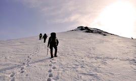 在雪的脚印从游人 免版税库存图片