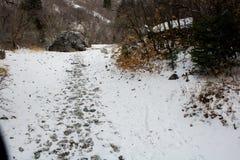 在雪的脚印沿岩石峡谷/普罗沃,犹他一串高山足迹  库存图片