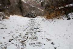 在雪的脚印沿岩石峡谷/普罗沃,犹他一串高山足迹  免版税图库摄影
