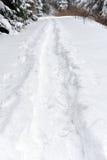 在雪的脚步 图库摄影