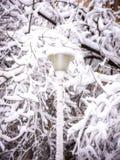 在雪的街灯 免版税图库摄影