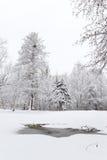 在雪的被解冻的补丁。冬天风景 免版税库存图片