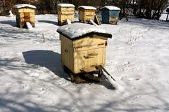 在雪的被风化的蜂蜂房 免版税库存图片
