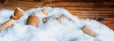 在雪的许多黄柏 库存图片