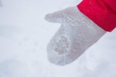在雪的象牙妇女手套与红色外套 免版税库存图片