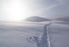 在雪的足迹在山 免版税库存图片