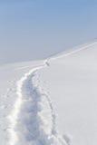 在雪的足迹在山 免版税库存照片