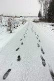 在雪的足迹 免版税图库摄影