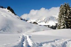 在雪的路径 图库摄影
