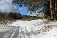 在雪的路径 免版税图库摄影