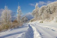 在雪的路径 免版税库存图片