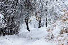 在雪的路 下雪在冬天 库存图片