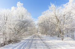 在雪的路 图库摄影