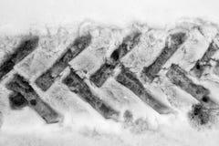 在雪的轮胎跟踪 免版税图库摄影