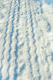 在雪的轮胎轨道 免版税图库摄影