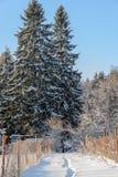 在雪的道路在两个庭院之间 库存图片