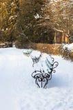 在雪的长凳在公园 免版税库存图片