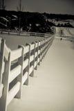 在雪的长的篱芭 免版税库存图片
