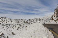在雪的黑门山,以色列 免版税库存图片