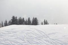 在雪的滑雪踪影 免版税图库摄影