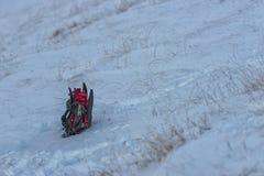 在雪的Snowshowes,与草,翁布里亚,意大利 库存图片