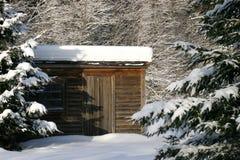 在雪盖帽下的议院 库存图片