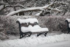 在雪盖的公园的长凳 免版税库存照片