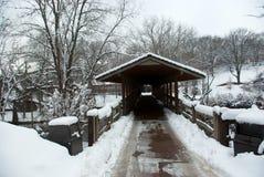 在雪盖的冬天桥梁在一寒冷 免版税库存照片