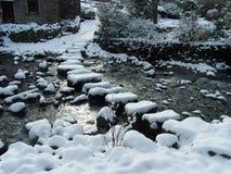 在雪盖的垫脚石 库存照片
